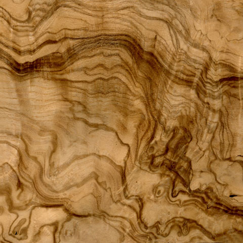 Olive Ash Burl Veneer Columbia Forest Products