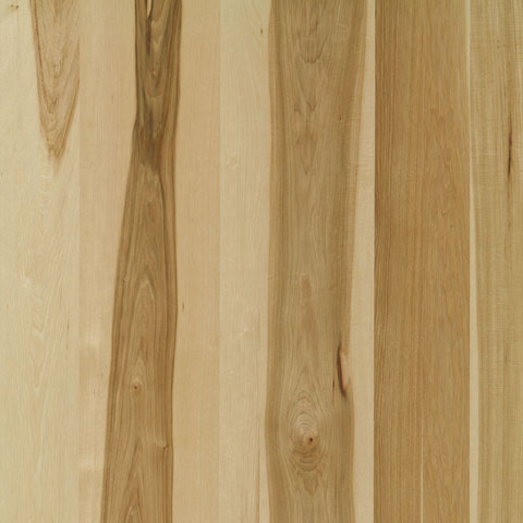 Hickory Veneer Plywood Columbia Forest Products