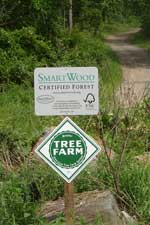 forestry, trees, sustainable, resources for landowners, plywood, hardwood plywood, veneer