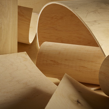 Radius Bending Plywood   Bendable & Flexible Plywood